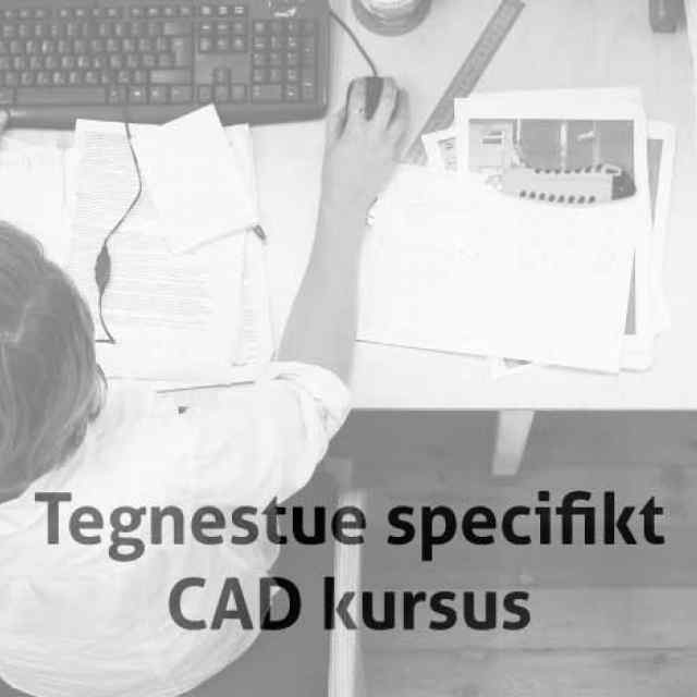 Tegnestue Specifikt Skræddersyet CAD kursus